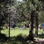 Endinseu-vos en la natura de la Vall del Madriu-Perafita-Claror